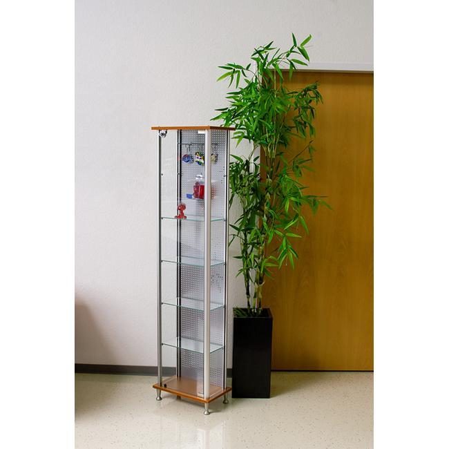 Vitrina de sticla cu perete din spate din tabla